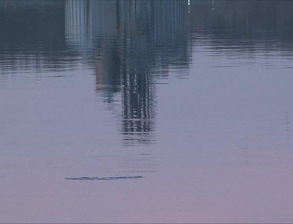mississippi river_1898451552249858293