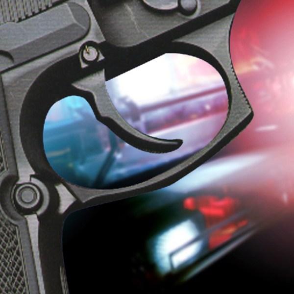 gun_1452976919480.jpg