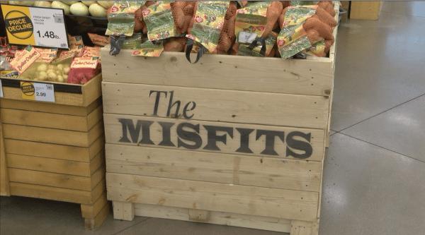misfit pic_1487975225250.png