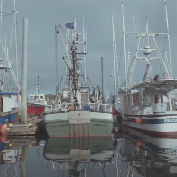 Sitka Salmon Shares| Farmers' Market Friday
