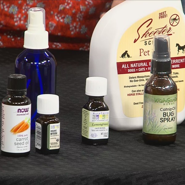 Wellness Wednesday | Sunscreen & Bug Repellent Alternatives