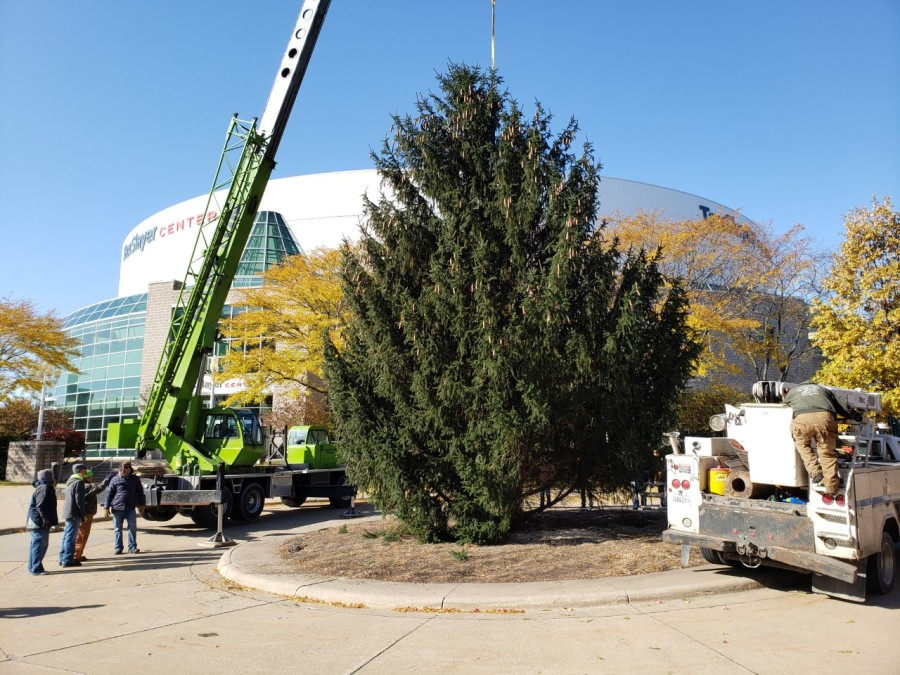 Christmas tree is up at the TaxSlayer Center. Photo by Bryan Bob