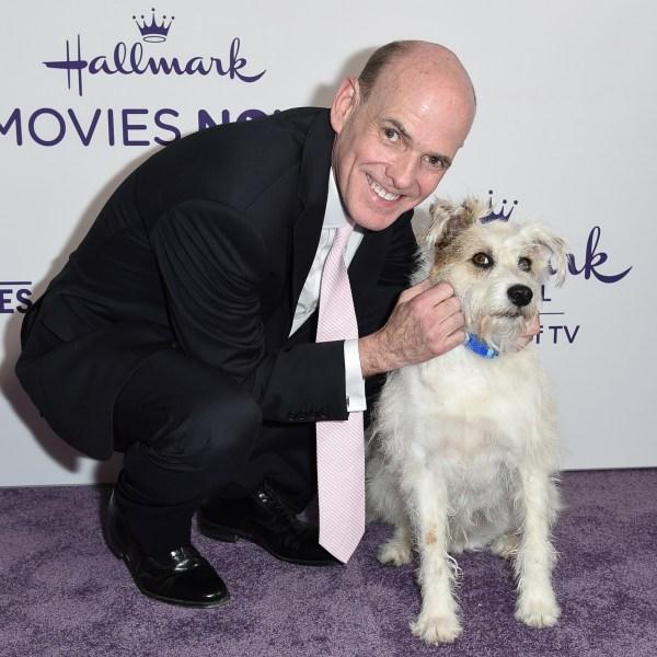 Bill Abbott, Happy the Dog